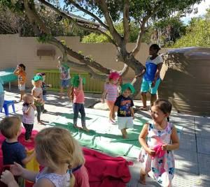 Capri Preprimary School Fees